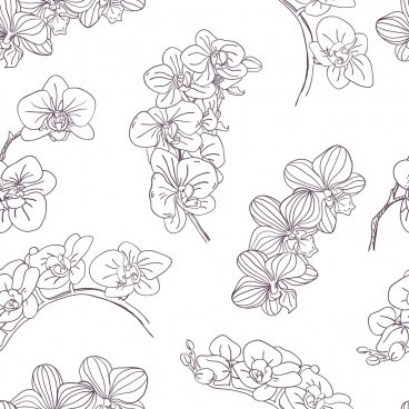 orchids background black white handdrawn sketch