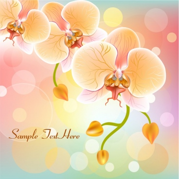 orchids background sparkling multicolored decoration