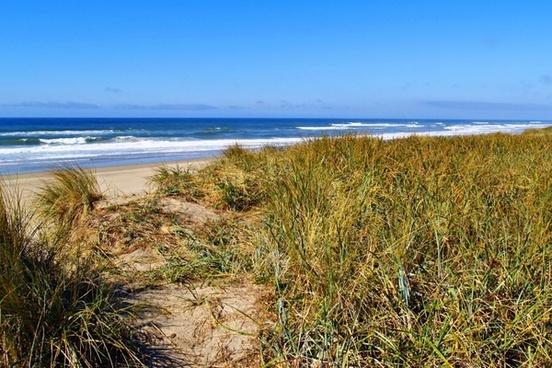 oregon beach seashore