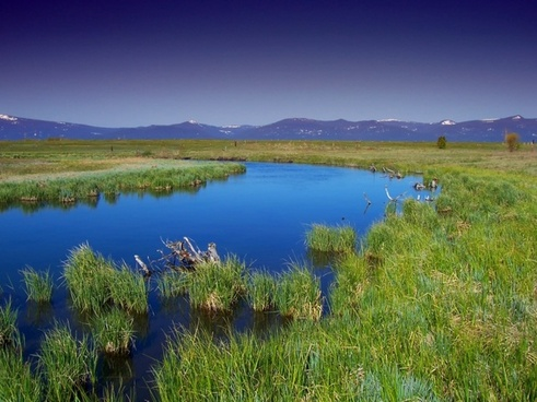 oregon wood river marsh water
