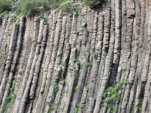 organ pipes volcanic