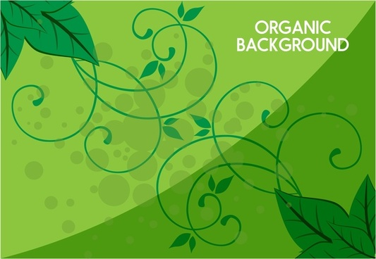 organic background leaves and curved decoration in green
