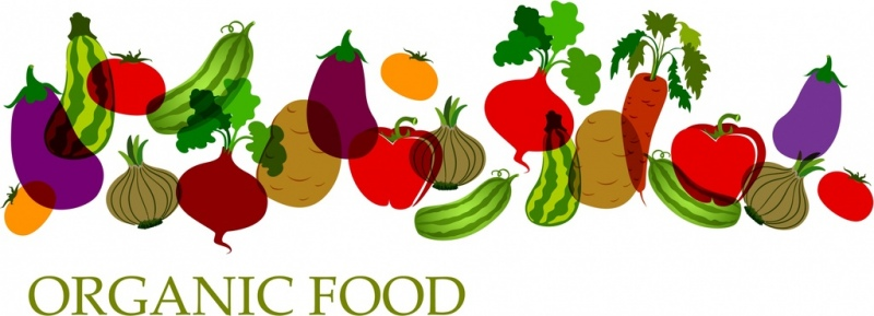 organic food background colored vegetable icons decor