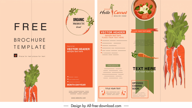 organic food brochure carrot theme colorful classic decor