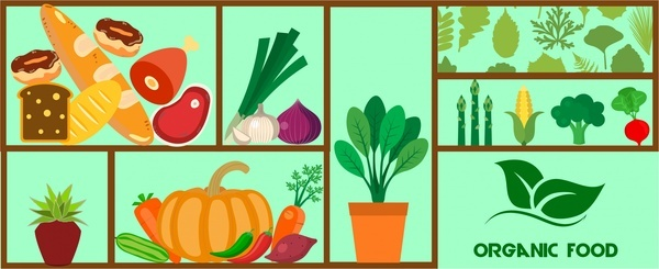 organic food design elements with various types style