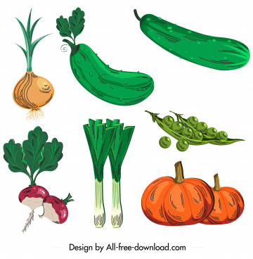 organic food icons colored classical sketch