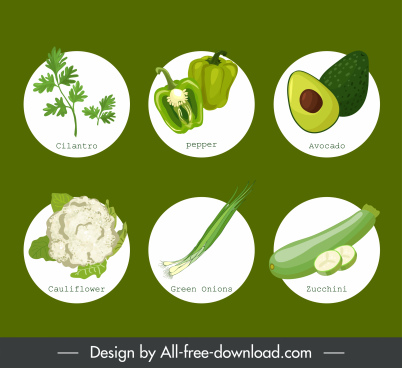 organic food icons green vegetables fruits sketch