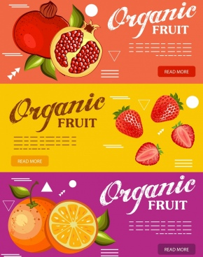 organic fruits advertising orange strawberry pomegranate icons