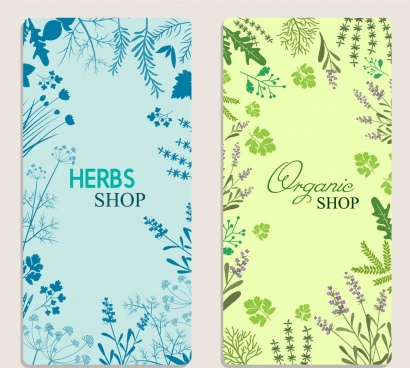 organic herbs advertisement colored flowers decoration