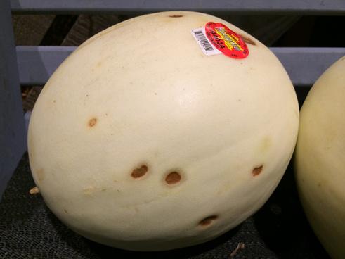 organic honeydew melon lesions