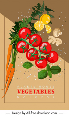 organic ingredients background colorful dynamic design
