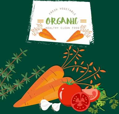 organic vegetable advertising carrot tomato garlic icons