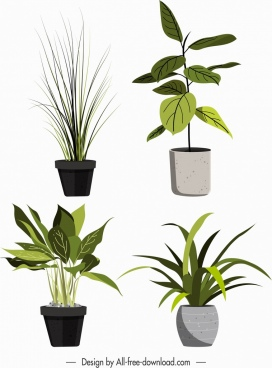 ornament plant pots icons green leaves sketch