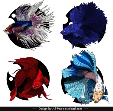 ornamental fish icons colorful sketch swimming species