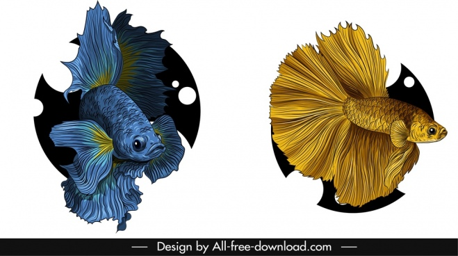 ornamental fish icons elegant blue golden sketch