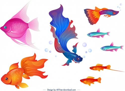 ornamental fishes icons colorful cartoon design