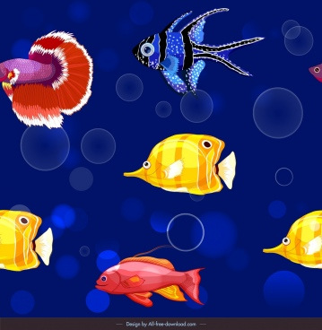 ornamental fishes pattern colorful swimming species decor