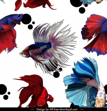 ornamental fishes pattern multicolored motion decor
