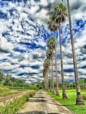osaka japan botanical garden