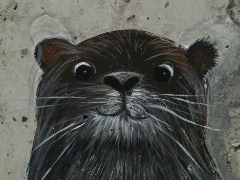 otter drawing image