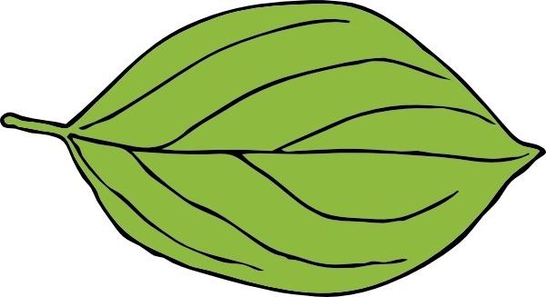 Oval Leaf clip art