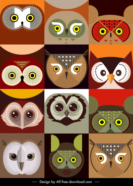 owl faces backgrounds colored flat symmetric design