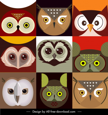 owl faces backgrounds colorful flat symmetric closeup design