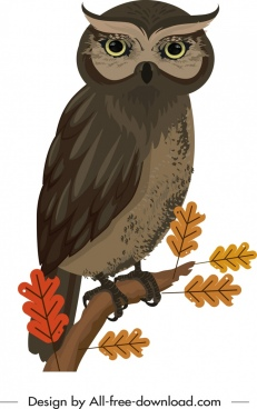 owl painting colored cartoon sketch