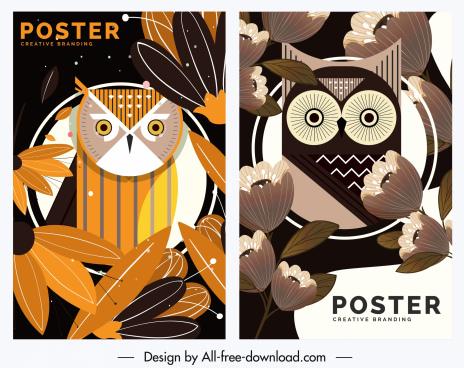 owl poster templates colored classical design petals decor