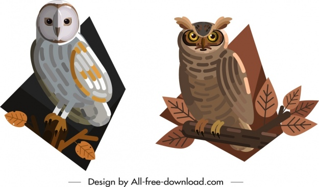 owl wild animal icons colored cartoon sketch