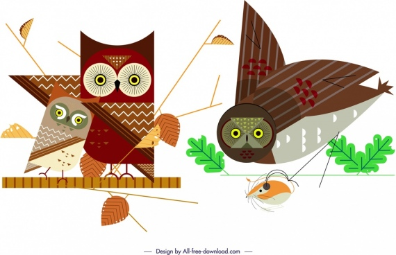 owl wild animal icons colored flat design