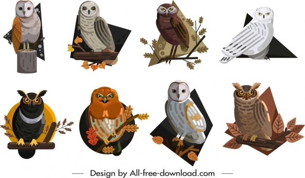 owls icons collection colored cartoon sketch