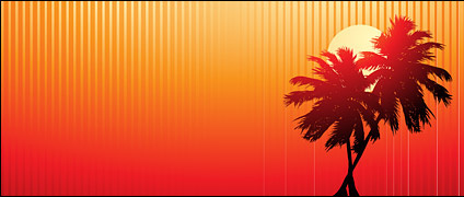 Palm tree at beach sunset