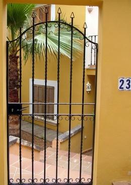 palm tree behind bars