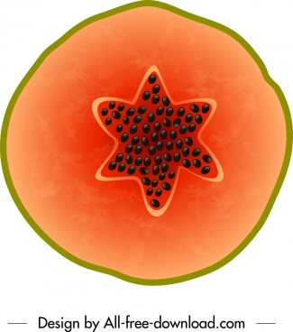 papaya background colored flat closeup sliced sketch