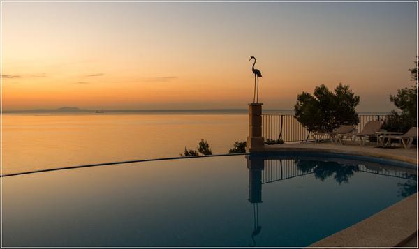 paradise poolside sunrise