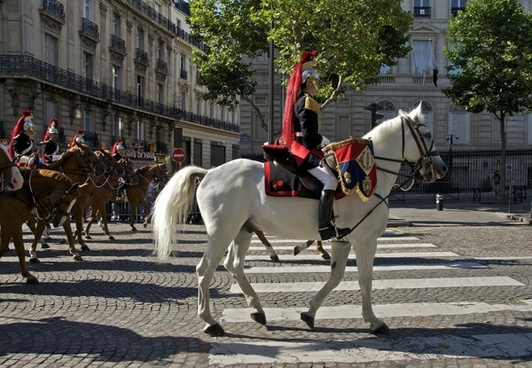 paris france horses