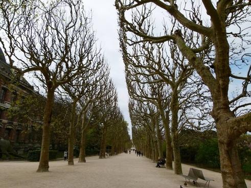 paris france sidewalk