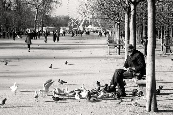 paris lhomme aux oiseaux jardin des tuileries