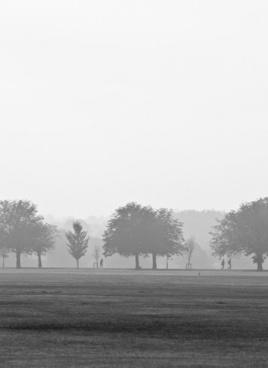 park in mist