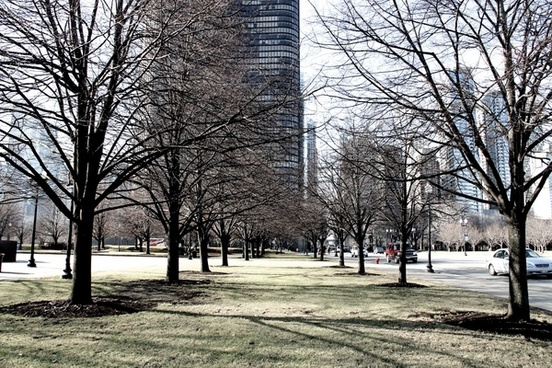 park with bare trees in city with tall buildings behind