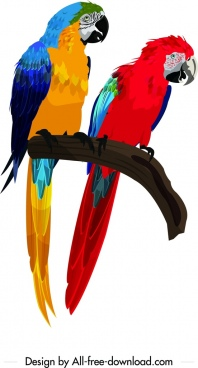 parrot couple painting colorful icons decor cartoon character