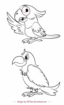 parrots species icons black white handdrawn sketch