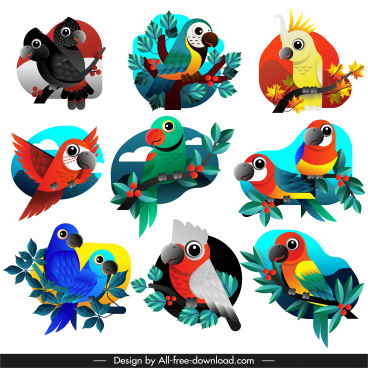 parrots species icons colorful flat sketch
