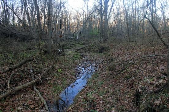 partially dried stream at bellevue state park iowa