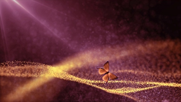 particles with flying butterfly