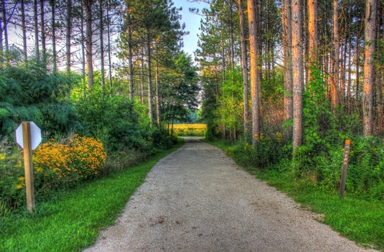 path into the woods at chain o lakes state park illinois