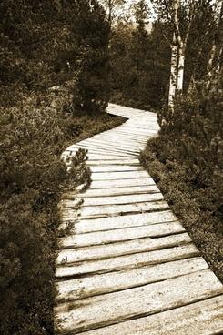 path of peat bogs