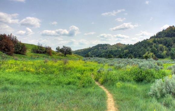 path through the wilderness at theodore roosevelt national park north dakota