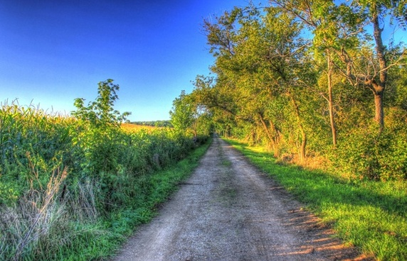 path to the hilltop at charles mound illinois